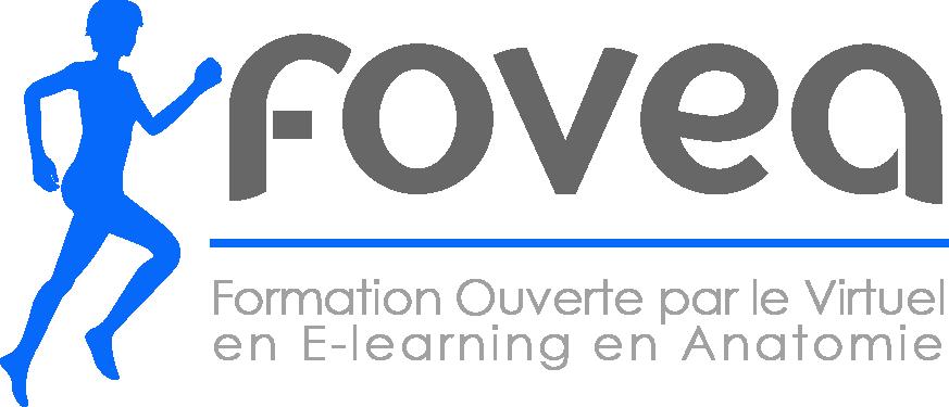 MOOC Fovea