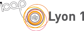 Service ICAP - Lyon 1